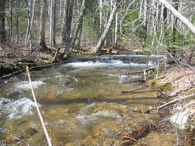 Birch Island Brook