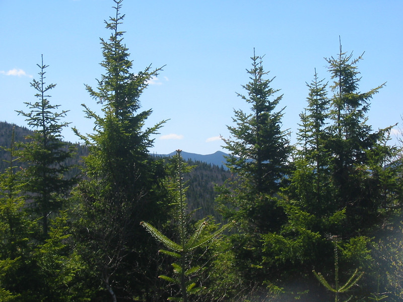 A couple of sub-peaks of Osceola