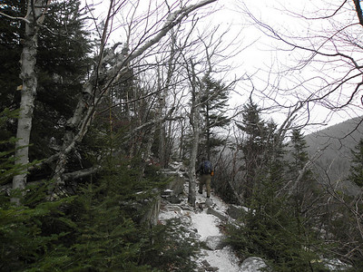 Ethan Pond Trail in the notch