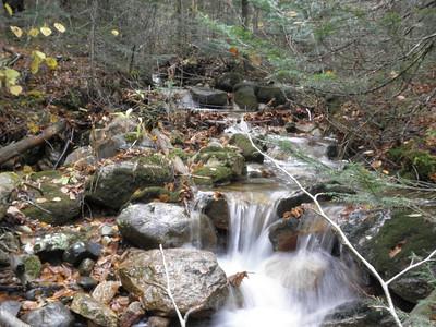 Smart Mill Brook higher up