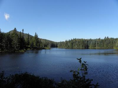Unknown Pond