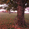 October in the Northeast Kingdom, VT.