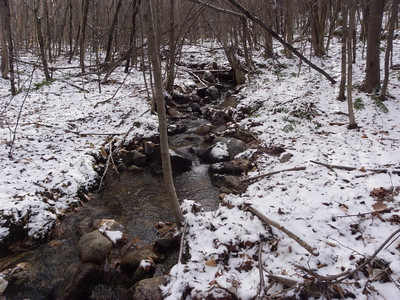 A brook amidst the snow