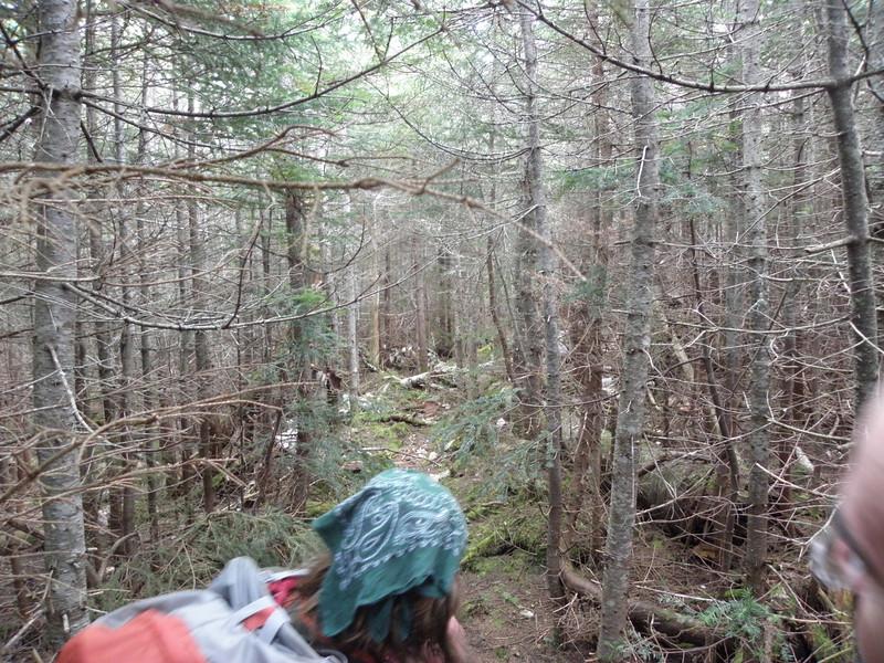 Bootleg trail
