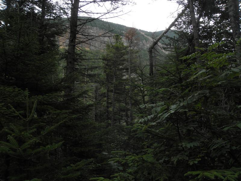 Lowell cliffs