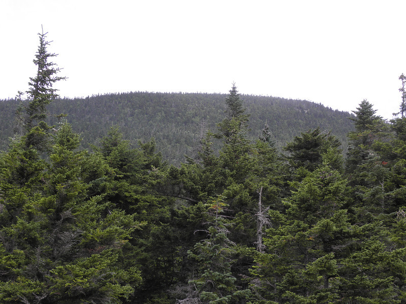 Mt Nancy