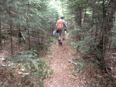 A pleasant Nancy Pond Trail heading north