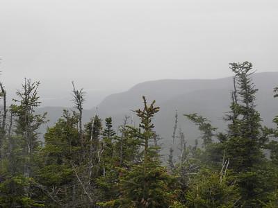 Mt Meader