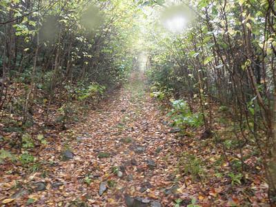 Road heading towards North Blue
