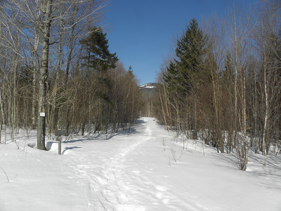 Cabot at the junction of Bunnell Notch