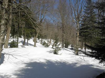 The Kilkenny Ridge Trail is somewhere around here