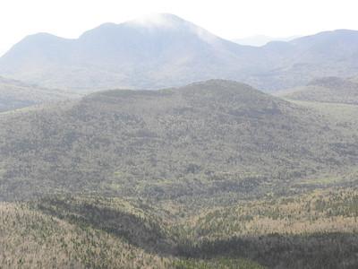 Shoal Pond Peak, I see logging roads
