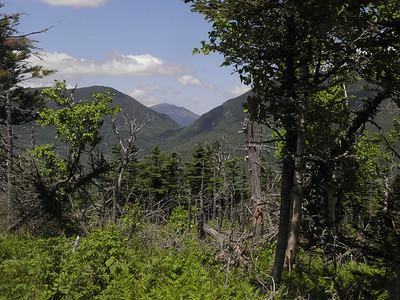 The view I'd been looking for all day, Carter Notch