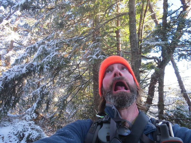 Oh my God, it's Horrid on Mt  Horrid!