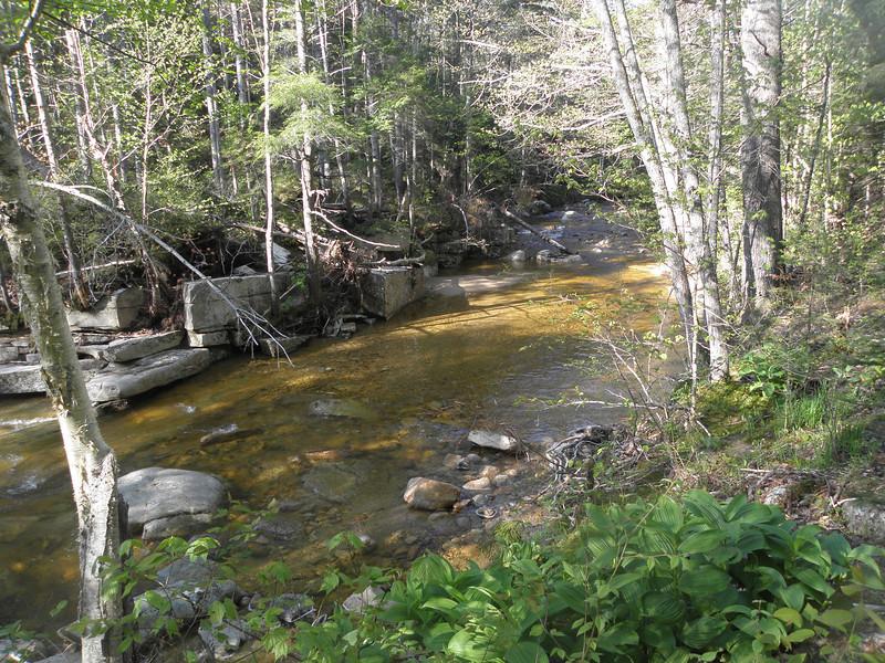 Swift River along the ski trail