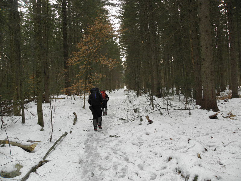 Starting out on the Bucklin Trail in nearly no snow