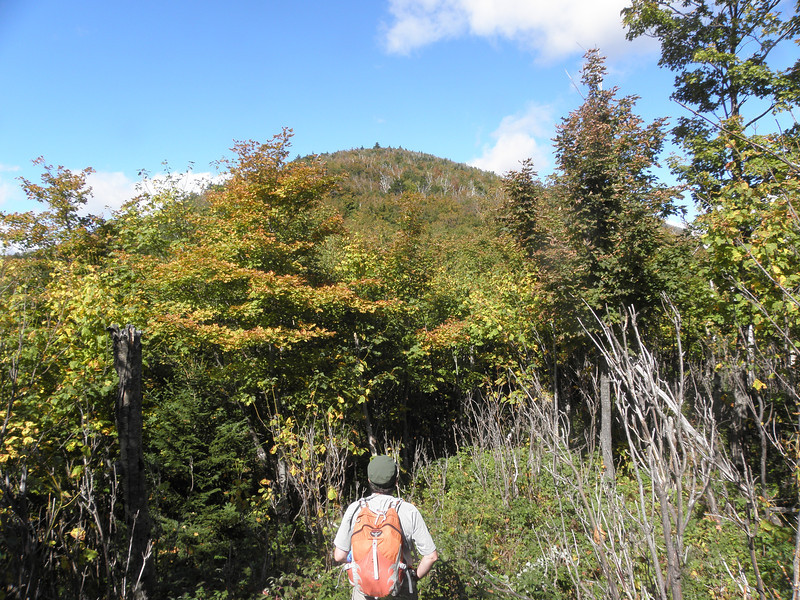 The flattish area below 2800', Sable in sight