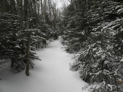 The unbroken trail