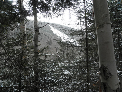 View of a slide on Whiteface