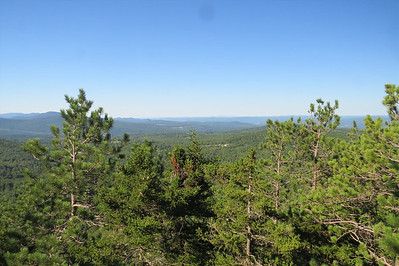 SPNHF herd path view of Knights Hill