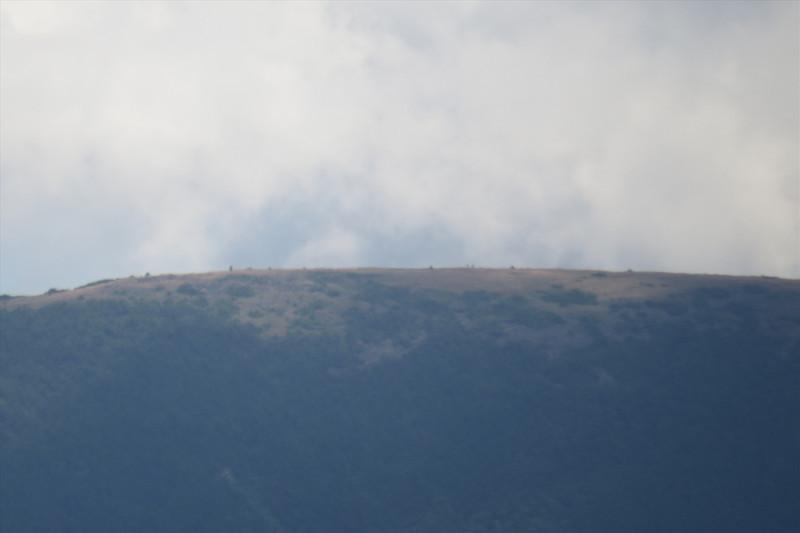 Moosilauke, can see people on the ridge