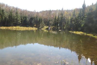 Bishop's Pond