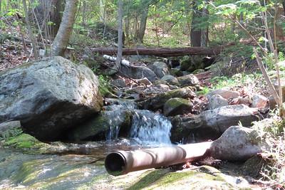 Brook near the beginning