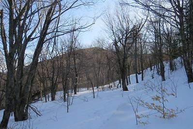 Summit through open woods