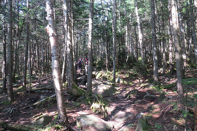 The very nice Snapper Trail