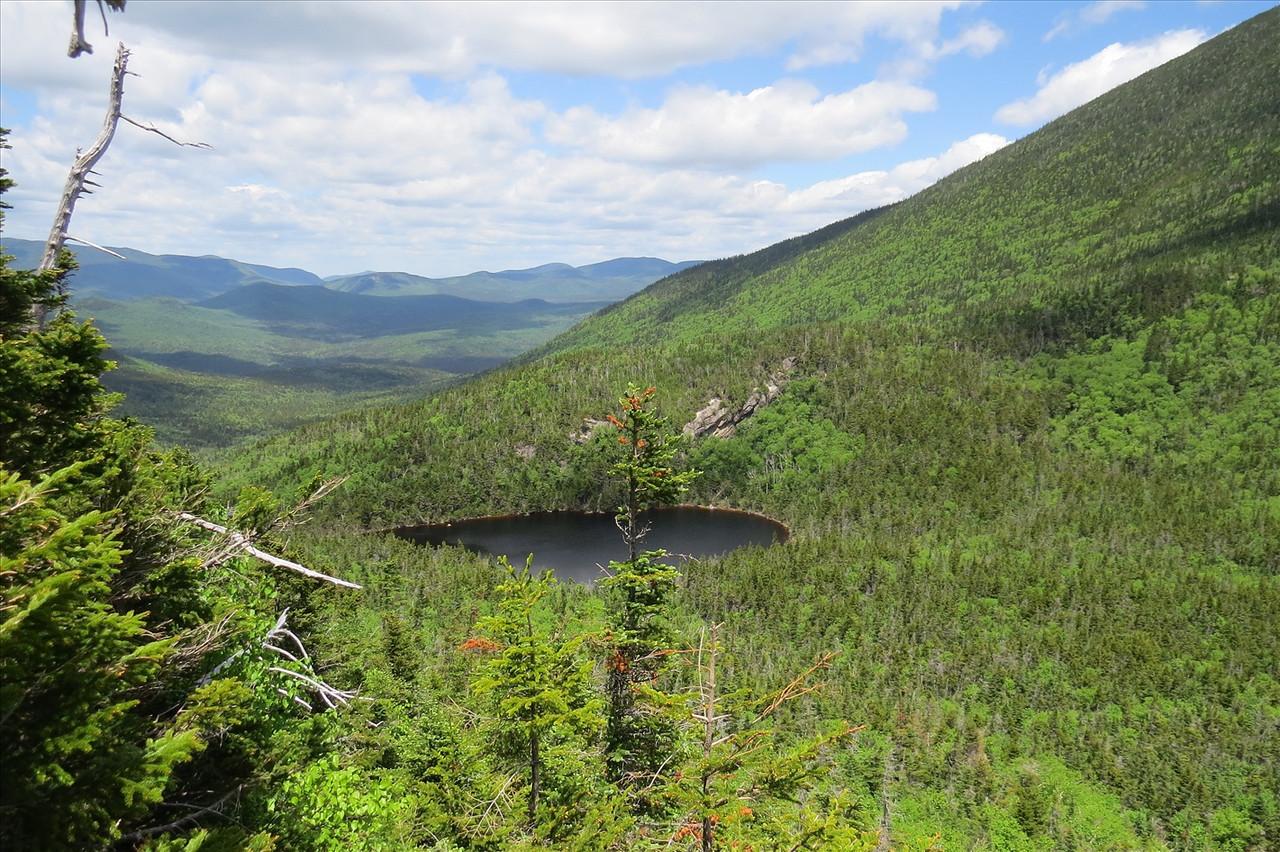 Carrigan Pond, courtesy of Joe