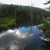 the Beaver Ponds