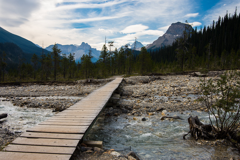 Boardwalk in the Yoho Valley