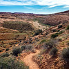 Descending on the Red Well Trail.  We'll be following that unassuming streambed down below all the way to the Escalante River.