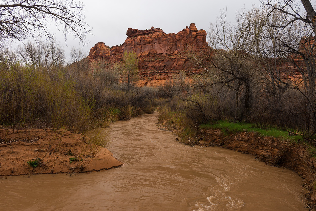 A muddy Escalante