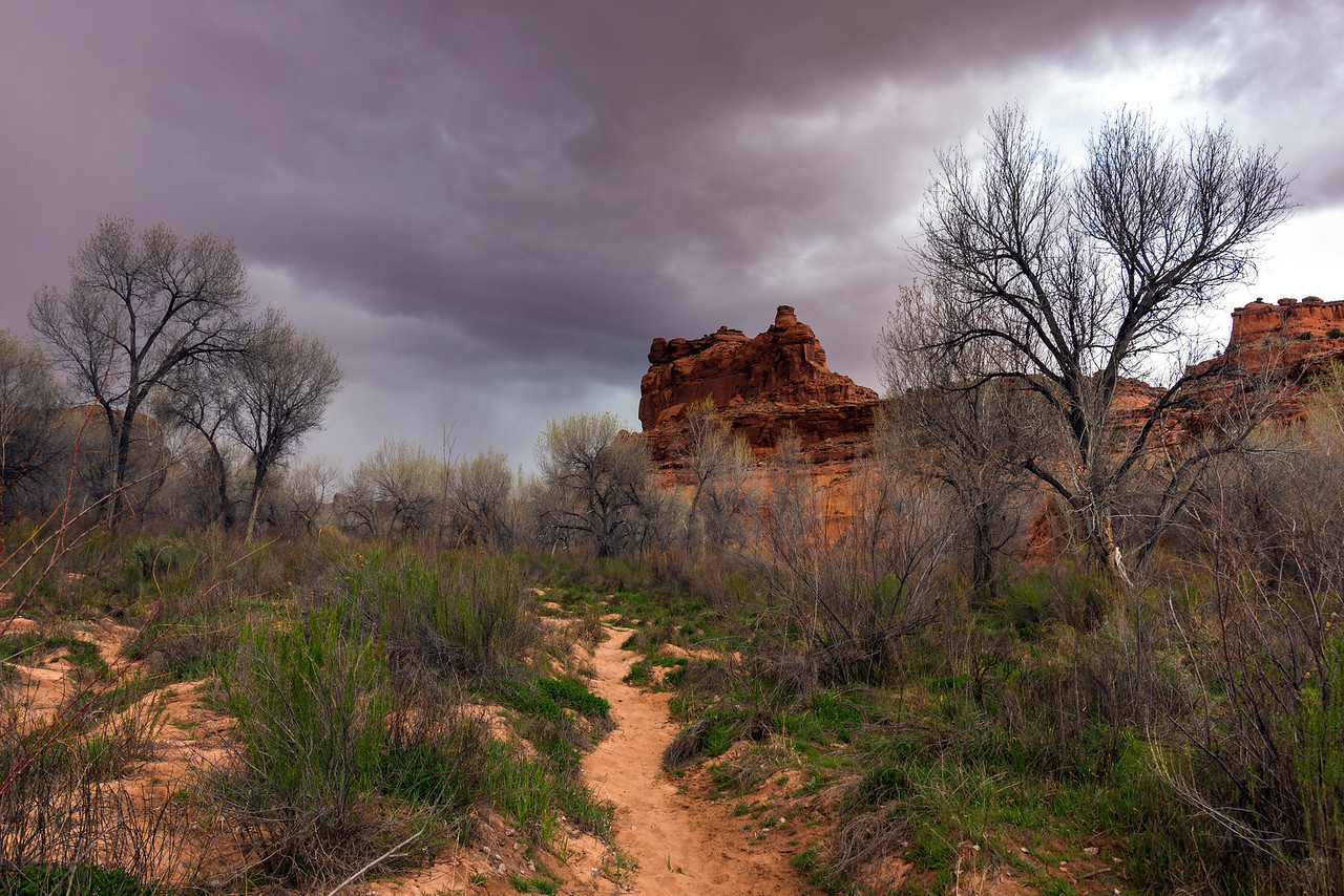 Storm rolling in on the Escalante River