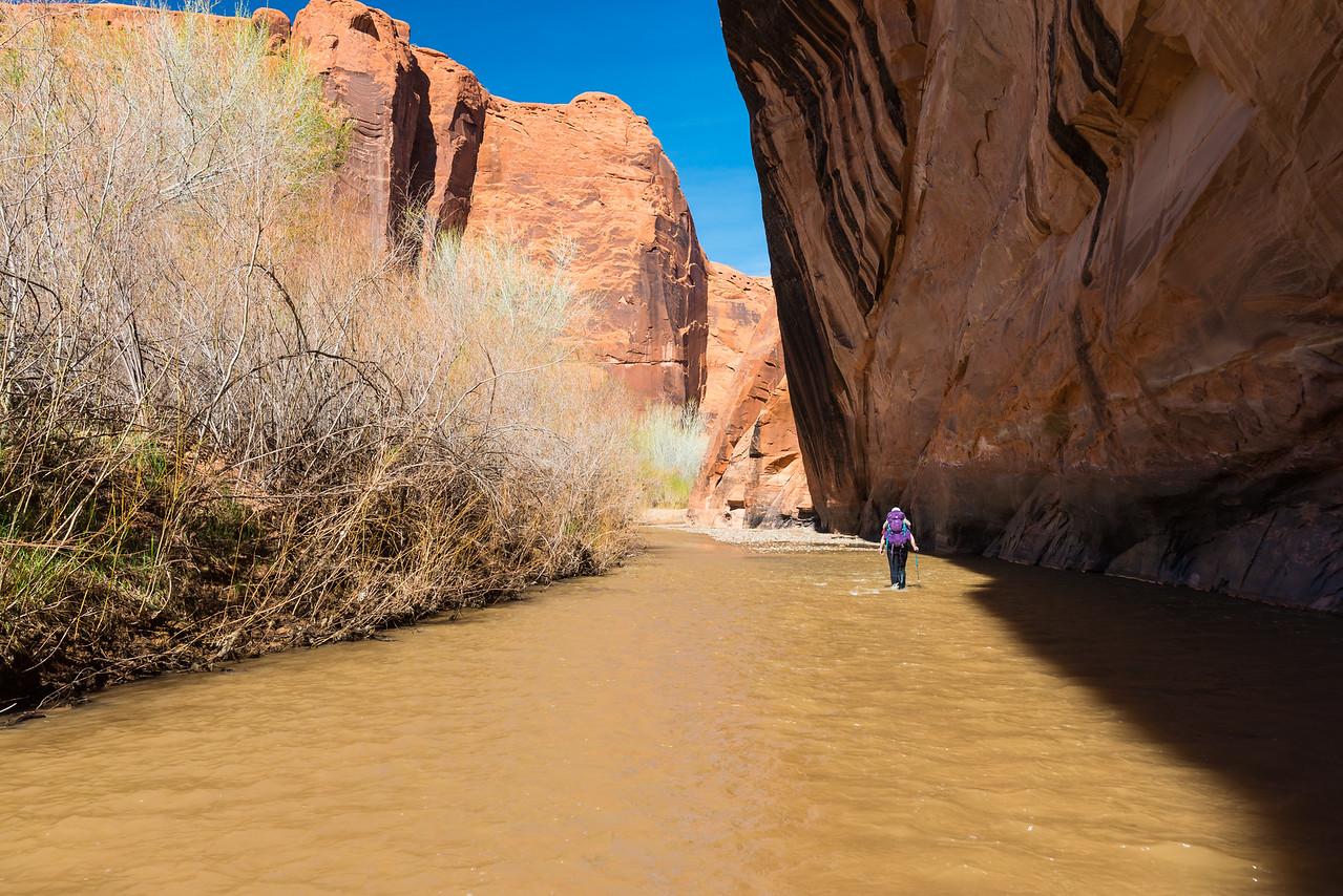 A river stroll