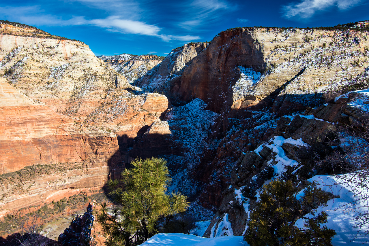Looking into Echo Canyon from Angel's Landing