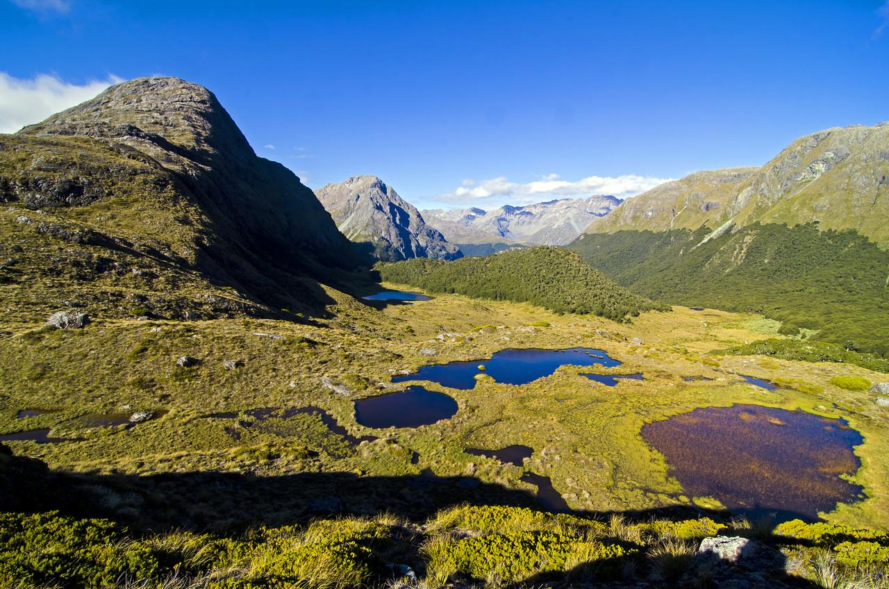 The wetlands of McKellar Saddle