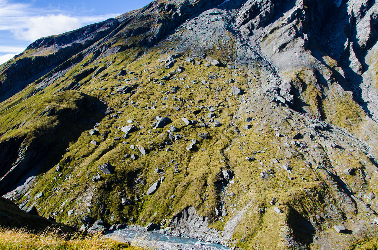 This is a perfect characterization of New Zealand terrain.  An unsorted, but vegetated alluvial fan on a steep slope.  These mountains are young. In fact, technically, they are still growing.  The only thing keeping them from rising in elevation is the rapid rate of erosion due to weather and surface processes.  As dynamic as the terrain may be, the climate is still wet enough that even on a steep alluvial fan with constant bombardment from above, vegetation will still take hold.