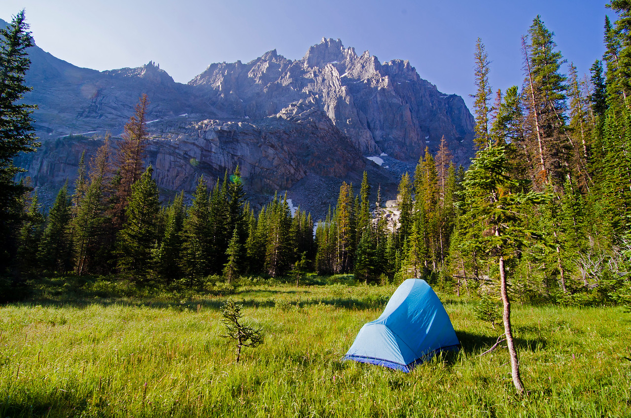 Home in the meadow.  A few hours of mean bushwhacking brought me here, but fortunately, the worst was behind me..