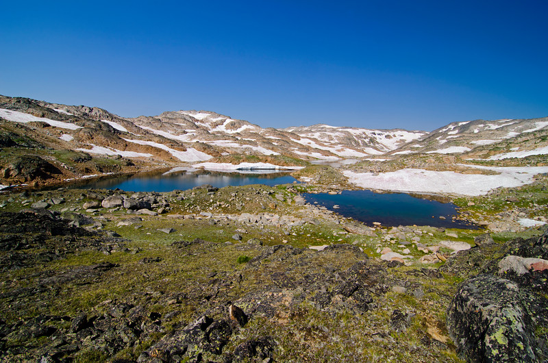 Copepod Lake.  My reward at the top of the waterfall.  This was early August, but after a good winter, spring came a bit later than usual to the high country.
