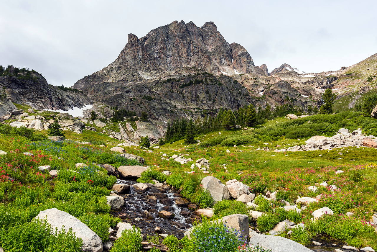 Mountains and streams and flowers near Shadow Lake