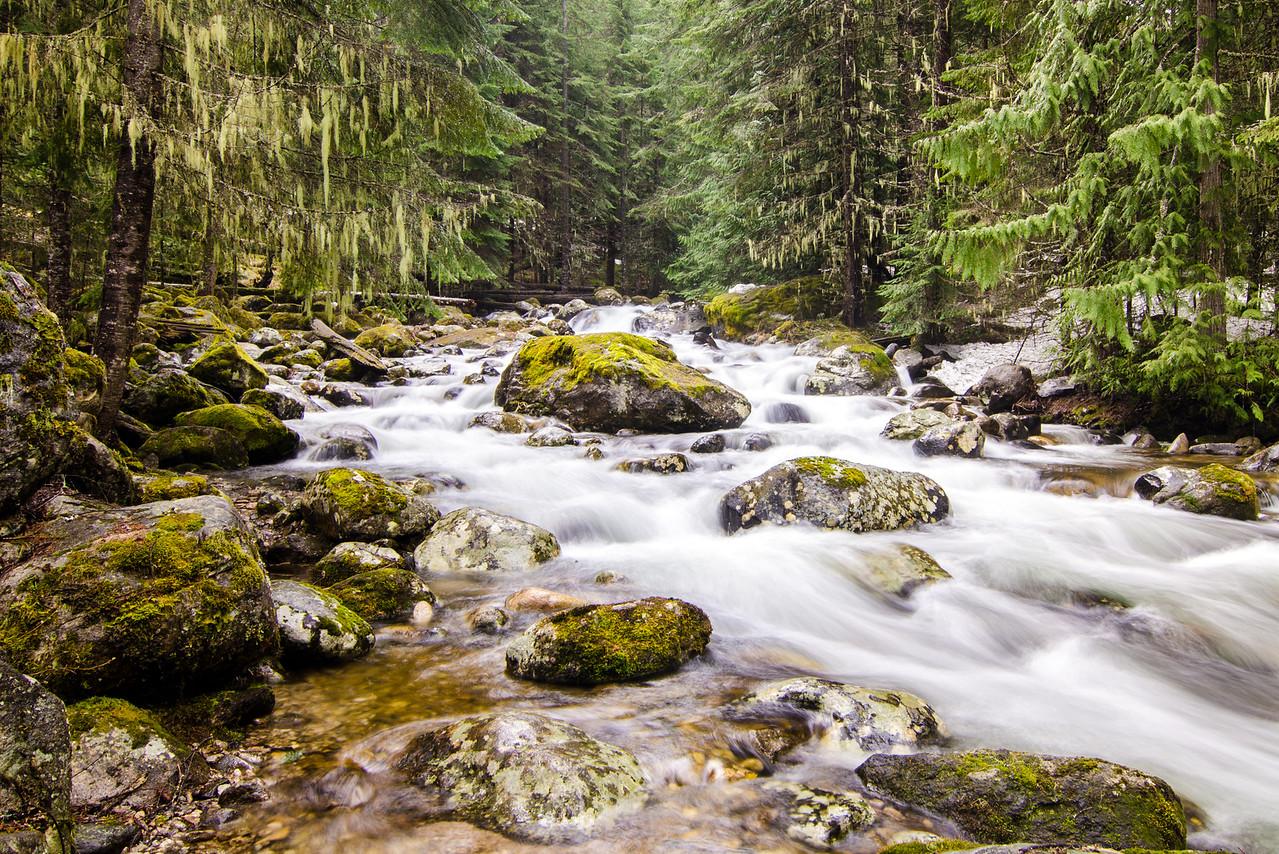 Huckleberry Creek, Selway Bitterroot Wildterness, Idaho