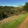 New Almaden Trail 021315-0436-2