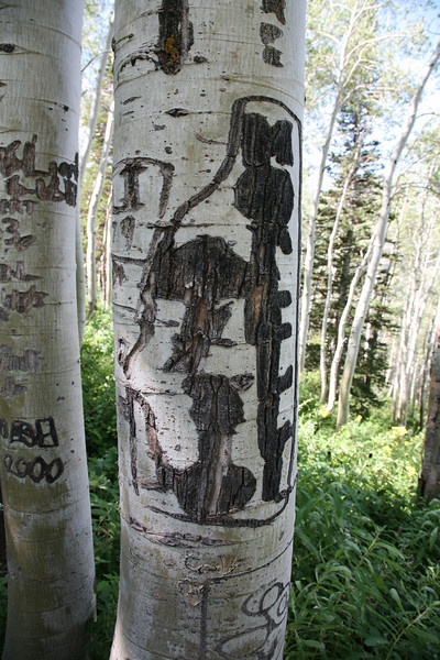 "Old tree carving, "" Arborglyphic""..dog, mountain, hiker? You tell me...."