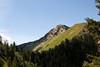 Mt Raymond, 10241 above...