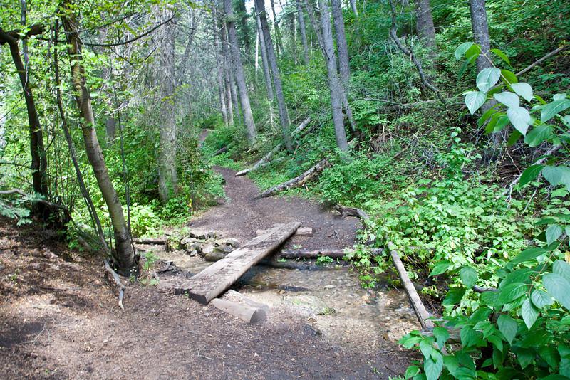 Beautifuly soft path here. Lower bridge.