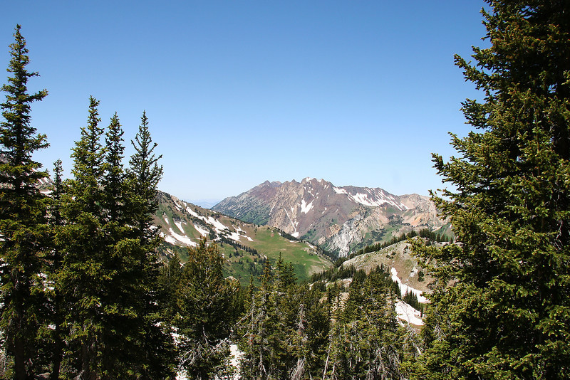 Mt Superior, from Sunset Pass, above Catherines pass .2 miles up the ridge.  That is Greeley Bowl, of Alta back bowl heaven,the green hill mid frame.