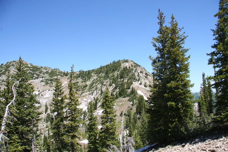 Tuscarora and Wolverine Peaks.