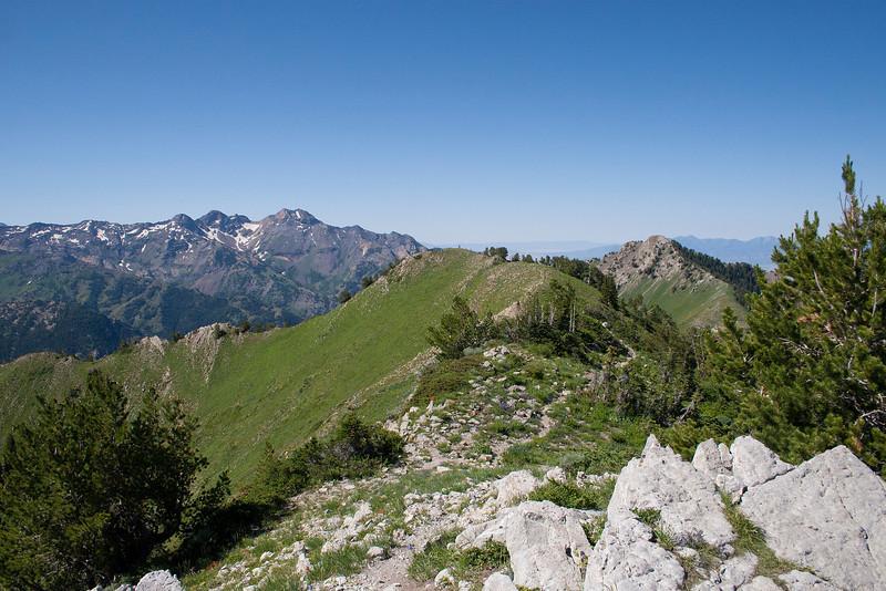 Upper Ridge to Gobblers Knob.